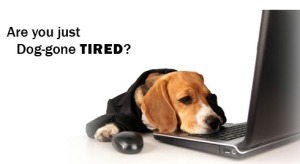 I'm just too tired to even think! Blog post today? Yeah right!