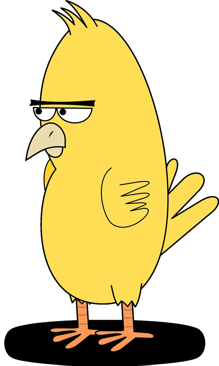 bird-159984_1280.png